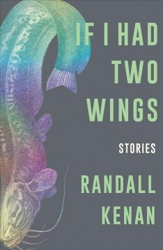 If I had two wings : stories cover image