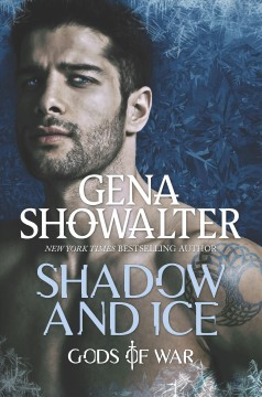 Shadow and ice cover image