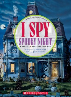 I spy spooky night : a book of picture riddles cover image
