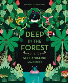Deep in the forest : a seek-and-find adventure cover image