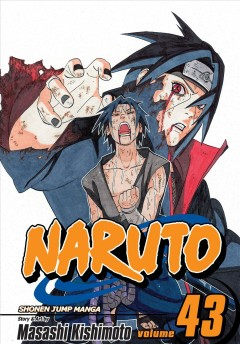 Naruto.  43,   The man with the truth cover image