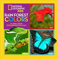 Rain forest colors cover image