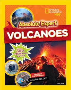 Volcanoes : all the latest facts from the field cover image