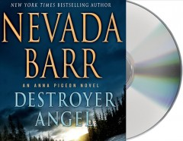 Destroyer angel cover image