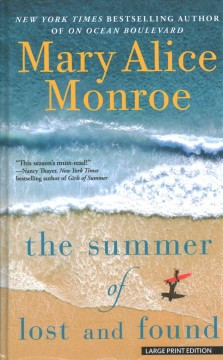 The summer of lost and found cover image