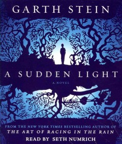 A sudden light cover image