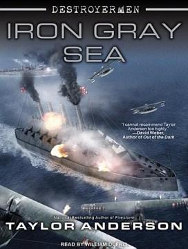 Iron gray sea cover image