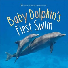 Baby dolphin's first swim cover image