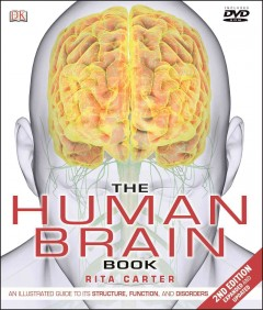 The human brain book cover image