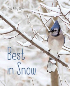 Best in snow cover image