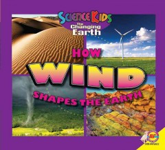 How wind shapes the earth cover image