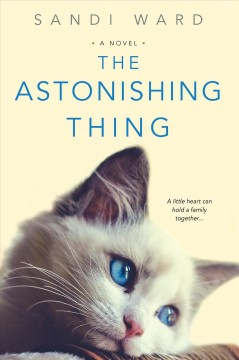 The astonishing thing cover image