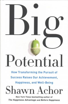 Big potential : how transforming the pursuit of success raises our achievement, happiness, and well-being cover image