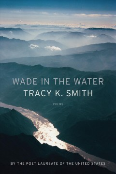 Wade in the water : poems cover image