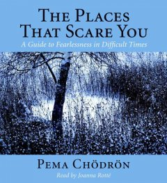 The places that scare you [a guide to fearlessness in difficult times] cover image