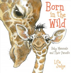 Born in the wild : baby mammals and their parents cover image