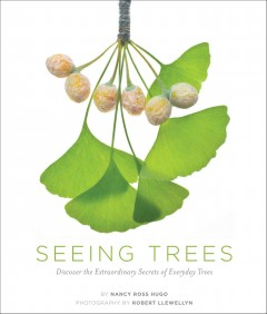 Seeing trees : discover the extraordinary secrets of everyday trees cover image