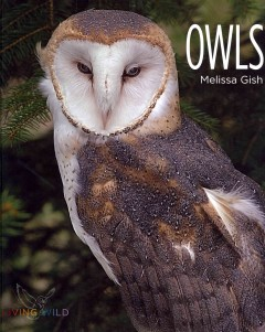 Owls cover image
