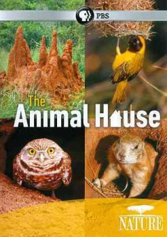 The animal house cover image