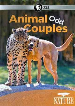 Animal odd couples cover image