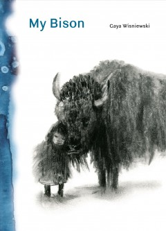 My bison cover image