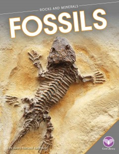 Fossil science kit [Science kit] cover image