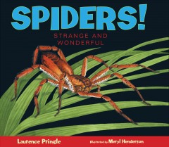 Spiders! : strange and wonderful cover image