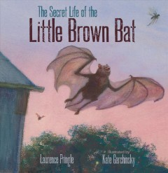 The secret life of the little brown bat cover image