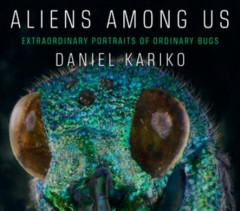 Aliens among us : extraordinary portraits of ordinary bugs cover image