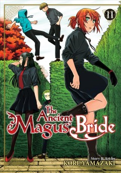 The ancient magus' bride. 11 cover image