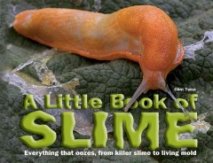 A little book of slime cover image