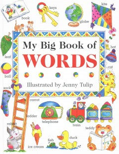 My big book of words cover image