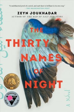 The thirty names of night cover image