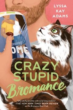 Crazy stupid bromance cover image