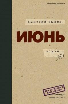 Ii︠u︡nʹ : roman cover image