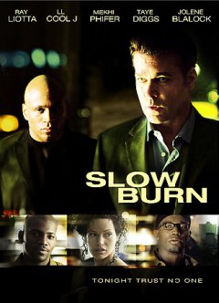 Slow burn cover image
