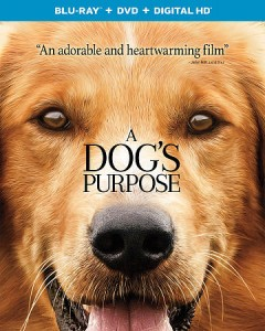 A dog's purpose [Blu-ray + DVD combo] cover image