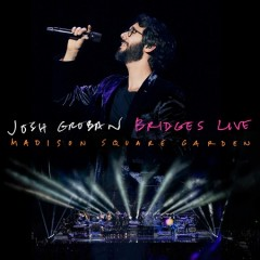 Bridges live Madison Square Garden cover image