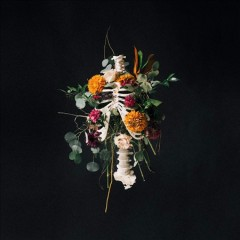 Graves into gardens cover image