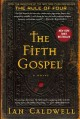 The fifth gospel : a novel