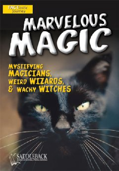 Marvelous magic : [mystifying magicians, wierd wizards, & wacky witches]