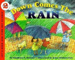 Cover art for Down comes the rain