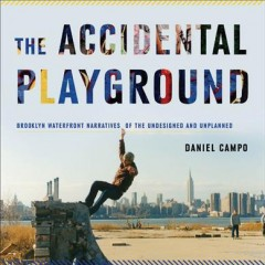 Cover art for The accidental playground