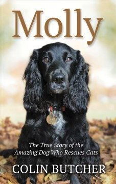 Molly : the true story of the amazing dog who rescues cats