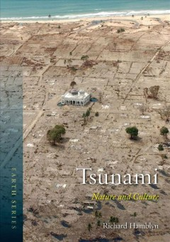 Book jacket for Tsunami