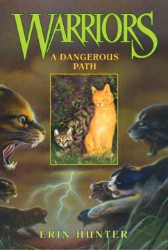 A dangerous path Erin Hunter.