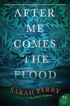 After me comes the flood : a novel