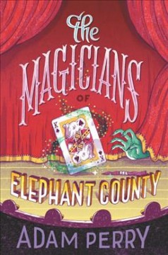 The magicians of Elephant County / written and illustrated by Adam Perry.