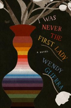 I was never the First Lady : a novel