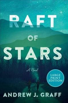 Raft of stars : a novel / Andrew J. Graff.